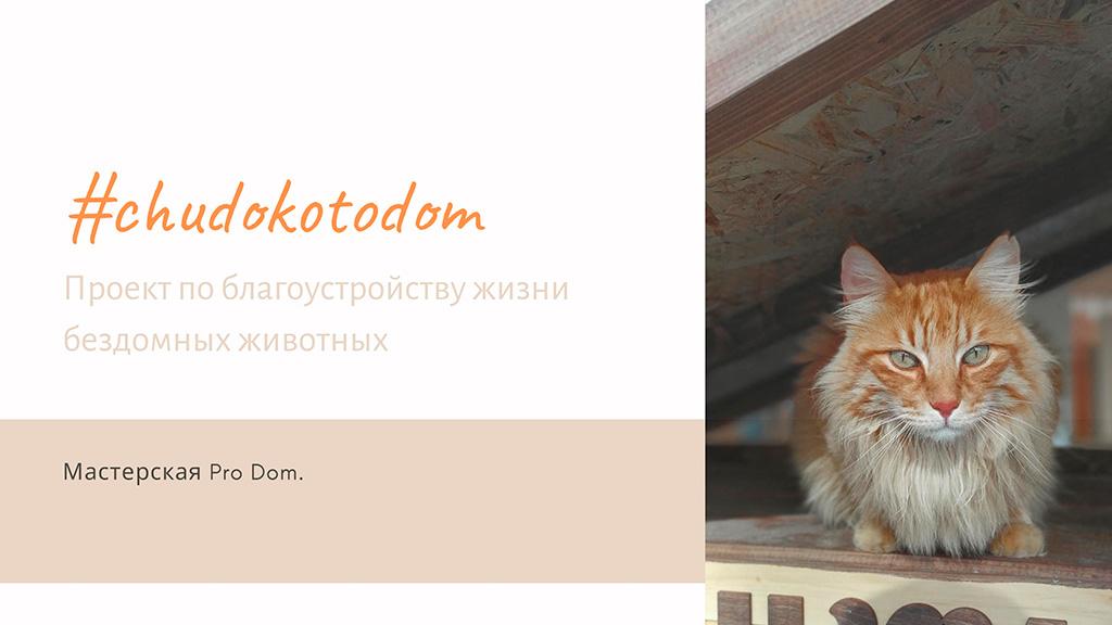 Кошкин дом Николы Чудакова