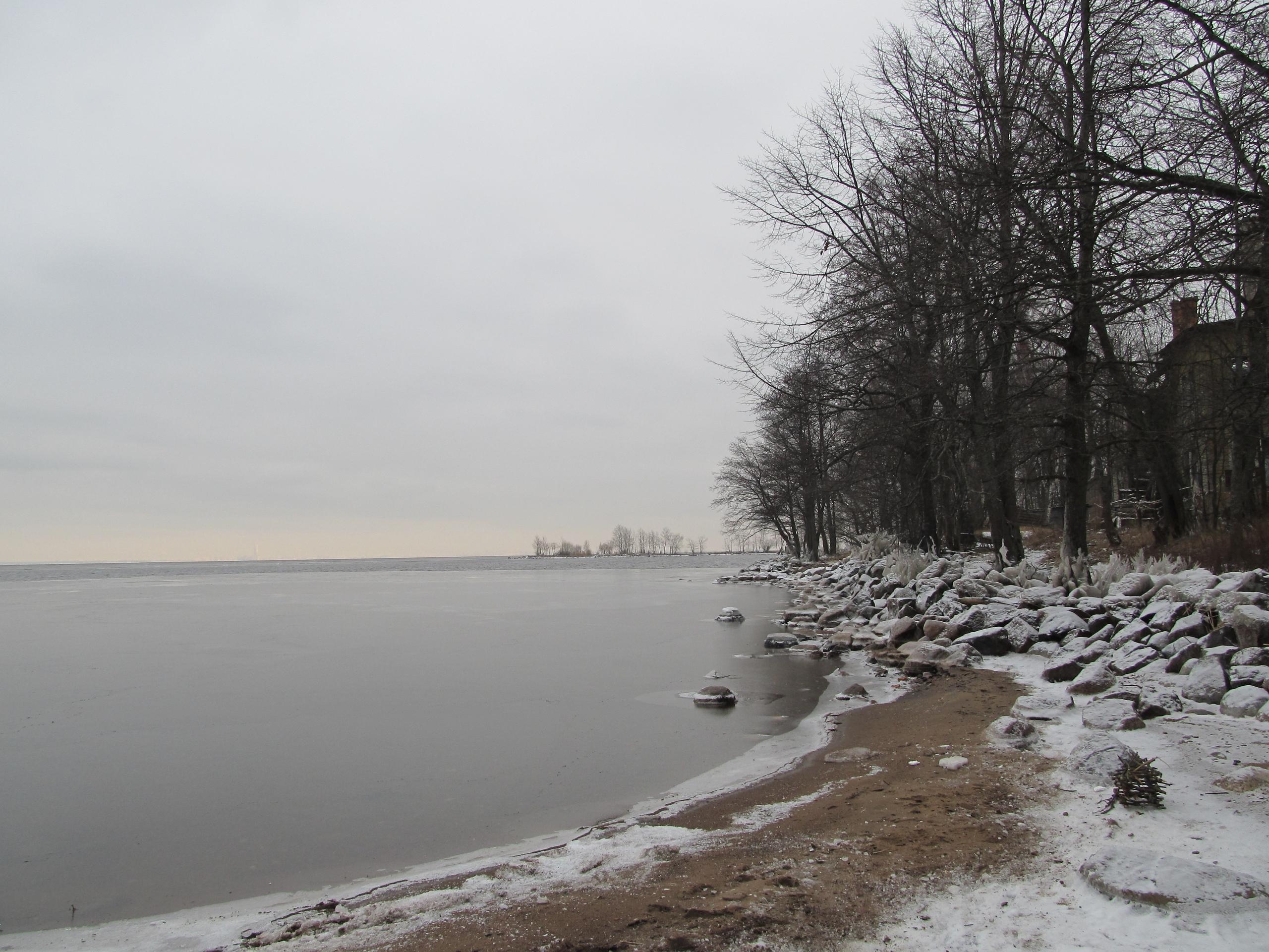 Залив в районе Петергофских дач Бенуа.